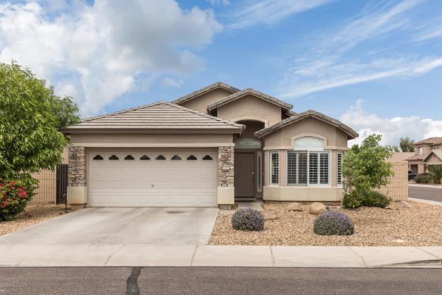 11906 W Jackson Street, Avondale, AZ 85323 (MLS #5913719) :: Cindy & Co at My Home Group