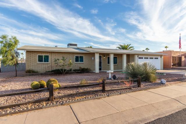 2849 E Captain Dreyfus Avenue, Phoenix, AZ 85032 (MLS #5913738) :: The Kenny Klaus Team