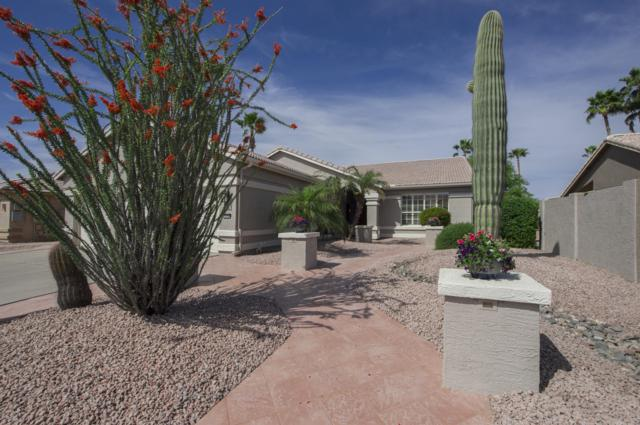 3318 N 153RD Drive, Goodyear, AZ 85395 (MLS #5913739) :: Cindy & Co at My Home Group
