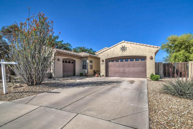 5640 S Four Peaks Place, Chandler, AZ 85249 (MLS #5913742) :: Yost Realty Group at RE/MAX Casa Grande