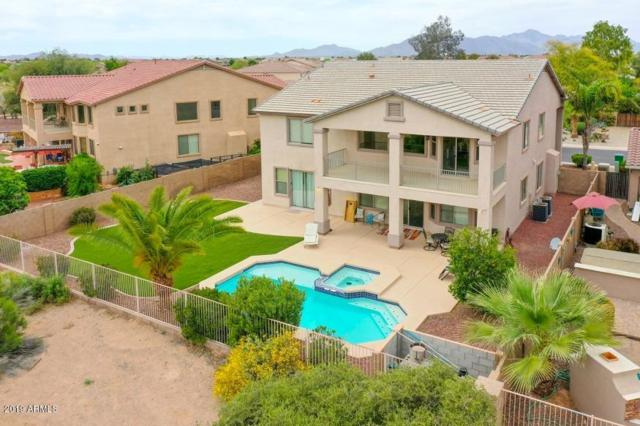 21823 N Ingram Court, Maricopa, AZ 85138 (MLS #5913749) :: CANAM Realty Group