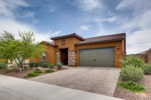 10243 W Oberlin Way, Peoria, AZ 85383 (MLS #5913769) :: Cindy & Co at My Home Group