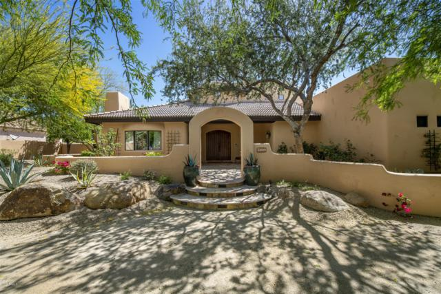 13429 S 33RD Street, Phoenix, AZ 85044 (MLS #5913810) :: CANAM Realty Group