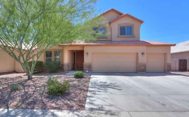 1565 E Prickly Pear Place, Casa Grande, AZ 85122 (MLS #5913827) :: Yost Realty Group at RE/MAX Casa Grande