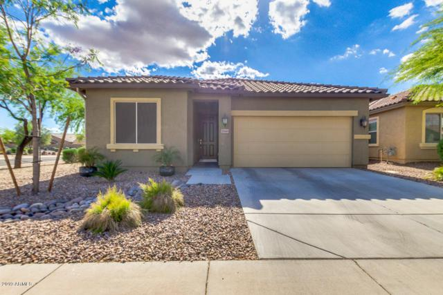 28446 N Broken Shale Drive, San Tan Valley, AZ 85143 (MLS #5913829) :: RE/MAX Excalibur