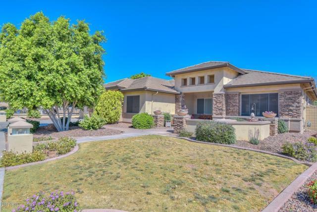8608 W Yukon Drive, Peoria, AZ 85382 (MLS #5913830) :: Cindy & Co at My Home Group