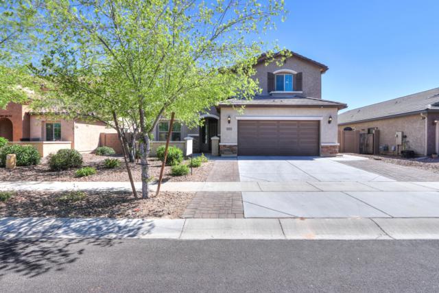 3131 E Chisum Lane, Gilbert, AZ 85297 (MLS #5913878) :: Riddle Realty