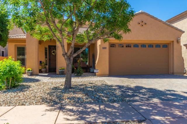 3409 W Little Hopi Drive, Phoenix, AZ 85086 (MLS #5913889) :: Revelation Real Estate