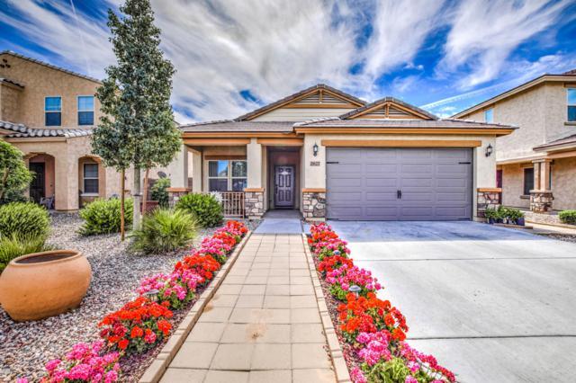 2627 E Hickory Street, Gilbert, AZ 85298 (MLS #5913899) :: Yost Realty Group at RE/MAX Casa Grande