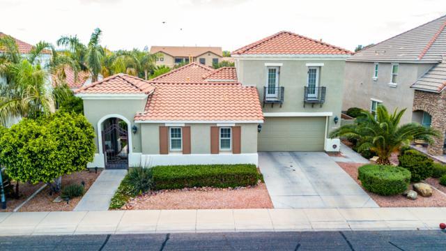 2311 E Azalea Drive, Chandler, AZ 85286 (MLS #5913900) :: The W Group