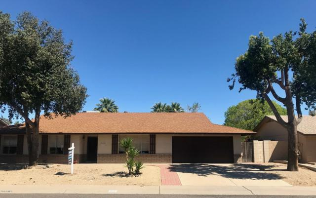 102 E Muriel Drive, Phoenix, AZ 85022 (MLS #5913944) :: Yost Realty Group at RE/MAX Casa Grande