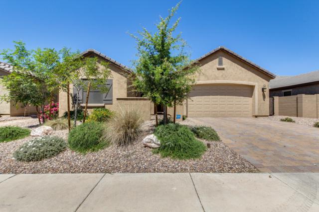 19598 W Grant Street, Buckeye, AZ 85326 (MLS #5913946) :: Yost Realty Group at RE/MAX Casa Grande