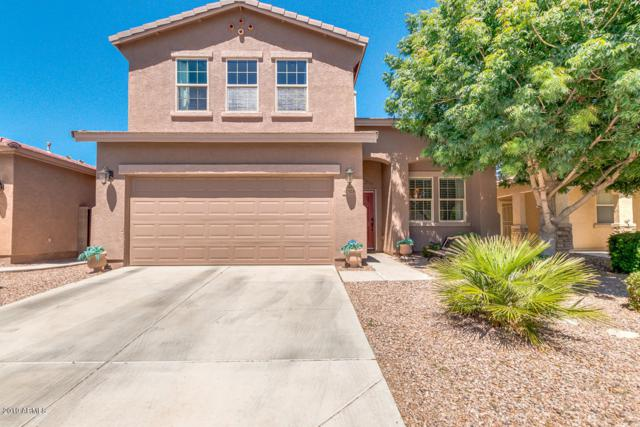 42528 W Somerset Drive, Maricopa, AZ 85138 (MLS #5913984) :: CANAM Realty Group