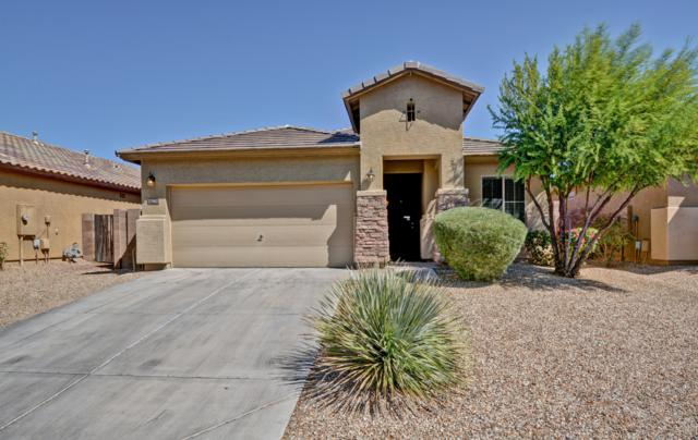 17962 W Vogel Avenue, Waddell, AZ 85355 (MLS #5913987) :: Yost Realty Group at RE/MAX Casa Grande