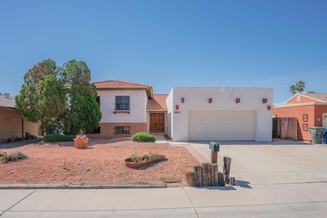 10423 W Calle De Plata, Phoenix, AZ 85037 (MLS #5914009) :: CC & Co. Real Estate Team