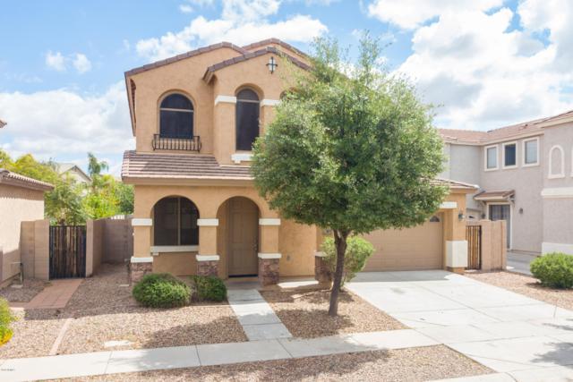 3875 S Angler Drive, Gilbert, AZ 85297 (MLS #5914037) :: CANAM Realty Group