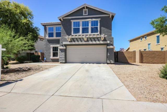 14770 W Columbine Drive, Surprise, AZ 85379 (MLS #5914048) :: Yost Realty Group at RE/MAX Casa Grande