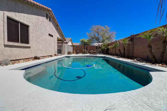 25535 W Blue Sky Way, Buckeye, AZ 85326 (MLS #5914050) :: The Property Partners at eXp Realty