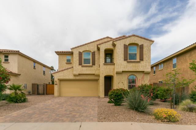 1110 E Sourwood Drive, Gilbert, AZ 85298 (MLS #5914057) :: Yost Realty Group at RE/MAX Casa Grande