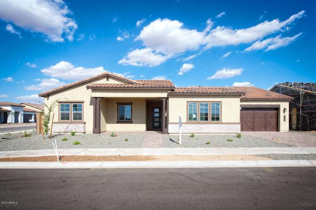 19427 S 210TH Street, Queen Creek, AZ 85142 (MLS #5914085) :: Realty Executives
