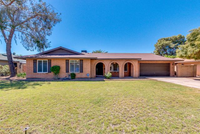 1065 E Watson Drive, Tempe, AZ 85283 (MLS #5914093) :: CANAM Realty Group