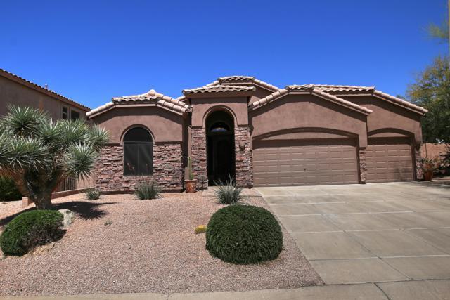 7528 E Odessa Circle, Mesa, AZ 85207 (MLS #5914100) :: Yost Realty Group at RE/MAX Casa Grande