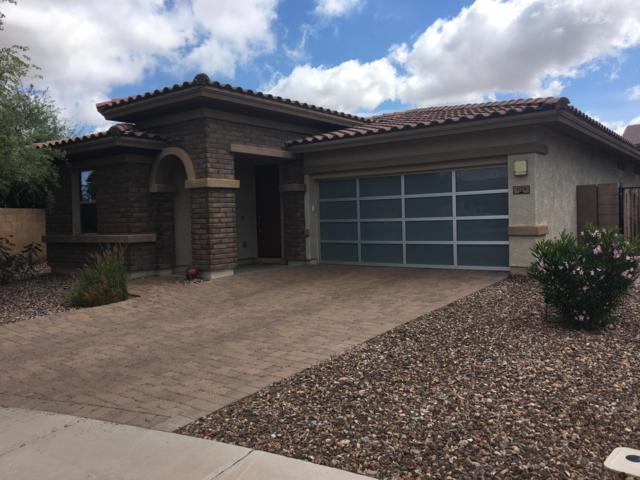1125 E Blue Spruce Lane, Gilbert, AZ 85298 (MLS #5914106) :: Yost Realty Group at RE/MAX Casa Grande