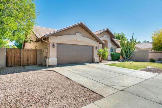 5624 W Tonopah Drive, Glendale, AZ 85308 (MLS #5914135) :: The Ford Team