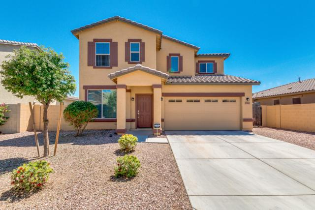17007 W Hilton Avenue, Goodyear, AZ 85338 (MLS #5914171) :: The Everest Team at My Home Group