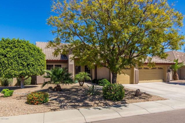 7972 W Foothill Drive, Peoria, AZ 85383 (MLS #5914177) :: Yost Realty Group at RE/MAX Casa Grande