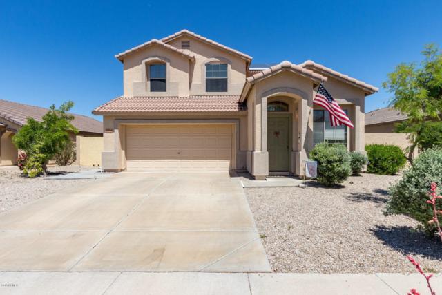 17556 W Dalea Drive, Goodyear, AZ 85338 (MLS #5914183) :: Lucido Agency