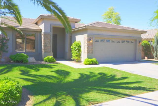 2093 E Torrey Pines Place, Chandler, AZ 85249 (MLS #5914203) :: Realty Executives