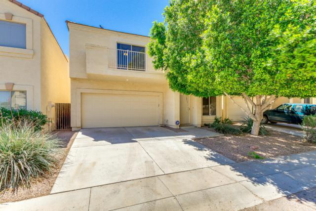 1011 W Julie Drive, Tempe, AZ 85283 (MLS #5914225) :: Lifestyle Partners Team