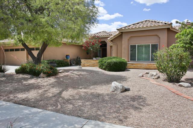 3714 E Park Avenue, Phoenix, AZ 85044 (MLS #5914240) :: CANAM Realty Group