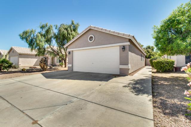 4211 N 107TH Lane, Phoenix, AZ 85037 (MLS #5914250) :: CC & Co. Real Estate Team