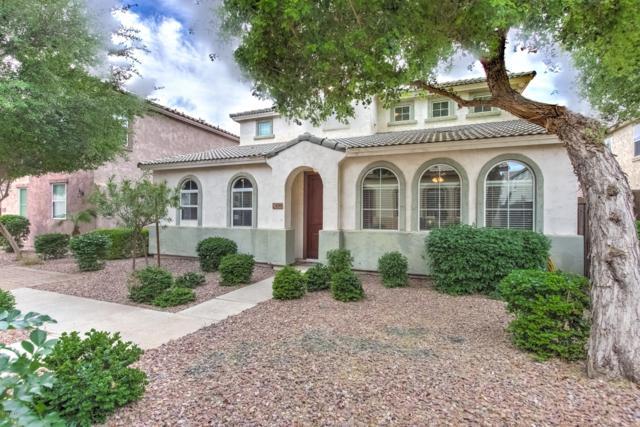 4244 E Carla Vista Drive, Gilbert, AZ 85295 (MLS #5914261) :: CANAM Realty Group