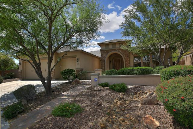25408 N 55TH Lane, Phoenix, AZ 85083 (MLS #5914289) :: The Ford Team