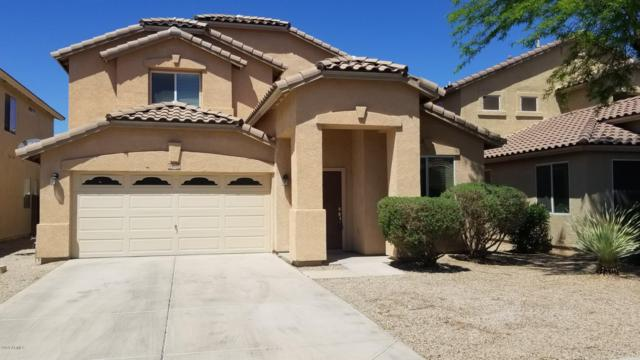 44388 W Oster Drive, Maricopa, AZ 85138 (MLS #5914303) :: CANAM Realty Group