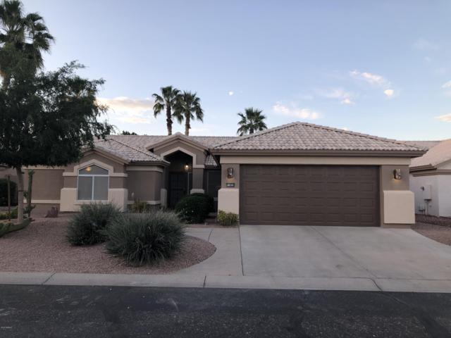 15826 W Amelia Drive, Goodyear, AZ 85395 (#5914323) :: Gateway Partners   Realty Executives Tucson Elite