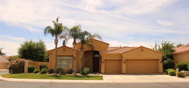 4462 S Wildflower Place, Chandler, AZ 85248 (MLS #5914331) :: The Daniel Montez Real Estate Group
