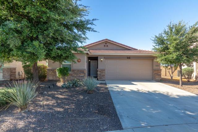873 E Leslie Avenue, San Tan Valley, AZ 85140 (MLS #5914355) :: The Bill and Cindy Flowers Team