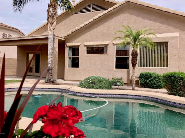 944 S Porter Street, Gilbert, AZ 85296 (MLS #5914387) :: CANAM Realty Group