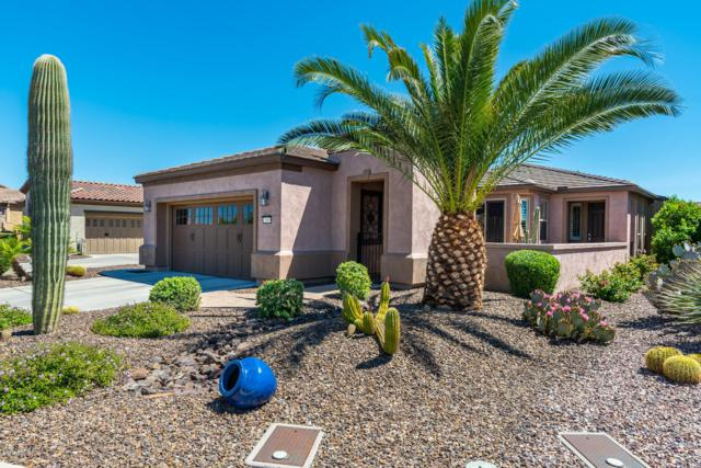 13065 W Lucia Drive, Peoria, AZ 85383 (MLS #5914403) :: Yost Realty Group at RE/MAX Casa Grande