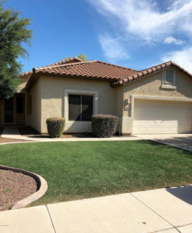 12524 W Glenrosa Drive, Litchfield Park, AZ 85340 (MLS #5914408) :: Devor Real Estate Associates