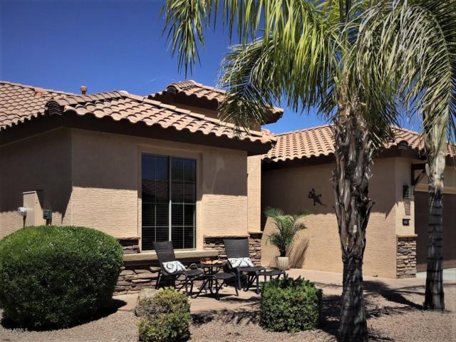 15708 W Roanoke Avenue, Goodyear, AZ 85395 (MLS #5914431) :: Yost Realty Group at RE/MAX Casa Grande