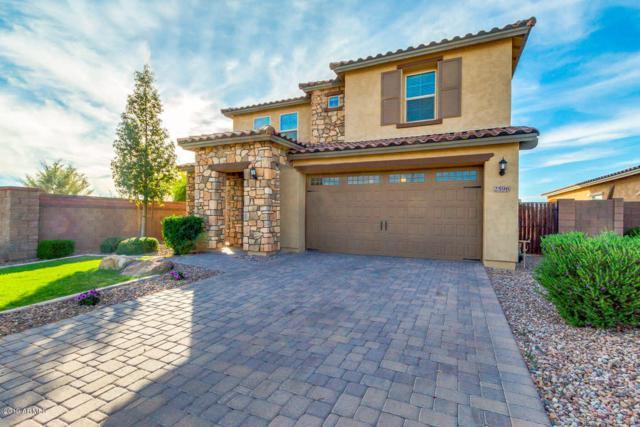2596 E Hickory Street, Gilbert, AZ 85298 (MLS #5914436) :: Yost Realty Group at RE/MAX Casa Grande