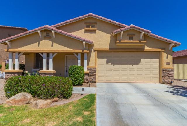 6826 W Darrel Road, Laveen, AZ 85339 (MLS #5914445) :: Occasio Realty