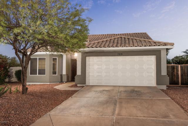 789 N El Dorado Drive, Gilbert, AZ 85233 (MLS #5914462) :: Lifestyle Partners Team