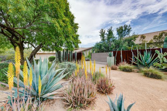 7105 E Paradise Drive, Scottsdale, AZ 85254 (MLS #5914480) :: CANAM Realty Group