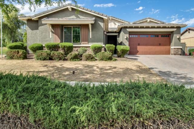 20586 W Garden Street, Buckeye, AZ 85396 (MLS #5914481) :: CC & Co. Real Estate Team